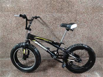 Used Fat Bike 20 Inch