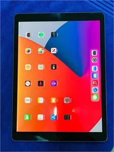 iPad pro 12.9 inch 256gb